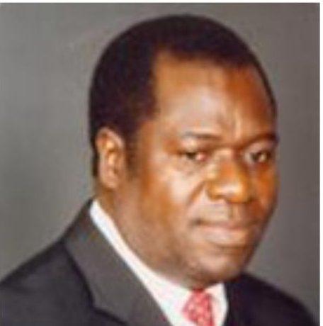 Prof. Wiseman Chirwa